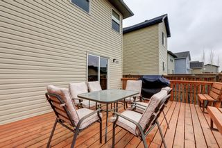 Photo 15: 185 Citadel Bluff Close NW in Calgary: House for sale : MLS®#  C4061648