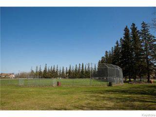 Photo 18: 501 Front Street in PETERSFIEL: Clandeboye / Lockport / Petersfield Residential for sale (Winnipeg area)  : MLS®# 1529642
