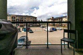Photo 17: 235 7825 71 Street in Edmonton: Zone 17 Condo for sale : MLS®# E4244303