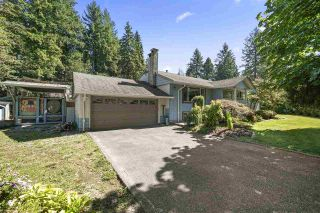 Photo 8: 21744 124 Avenue in Maple Ridge: West Central House for sale : MLS®# R2552153