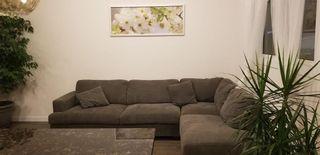 Photo 13: 456 Martin Avenue in Winnipeg: East Kildonan Residential for sale (3B)  : MLS®# 202124846
