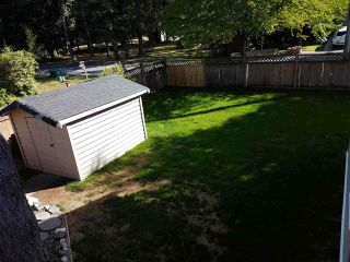 Photo 11: 4452 208A Street in Langley: Brookswood Langley House for sale : MLS®# R2119827