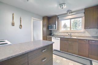 Photo 16: 9832 187 Street in Edmonton: Zone 20 House for sale : MLS®# E4253744