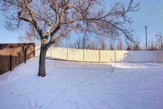 Photo 6: 22 9375 172 Street in Edmonton: Zone 20 House Half Duplex for sale : MLS®# E4227027