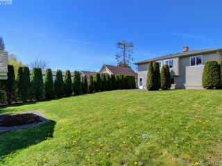 Photo 39: 3067 Albina St in VICTORIA: SW Gorge House for sale (Saanich West)  : MLS®# 837748