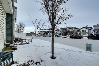 Photo 19: 5107 111 Tarawood Lane NE in Calgary: Taradale Row/Townhouse for sale : MLS®# A1071290
