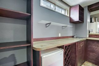 Photo 27: 23 Applecrest Court SE in Calgary: Applewood Park Detached for sale : MLS®# A1079523