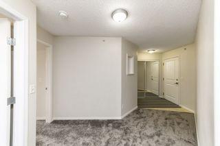 Photo 5: 329 16221 95 Street in Edmonton: Zone 28 Condo for sale : MLS®# E4257532