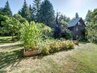 Photo 26: 2595 SYLVAN Drive: Roberts Creek House for sale (Sunshine Coast)  : MLS®# R2481642