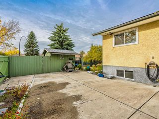 Photo 39: 106 Abalone Place NE in Calgary: Abbeydale Semi Detached for sale : MLS®# A1039180