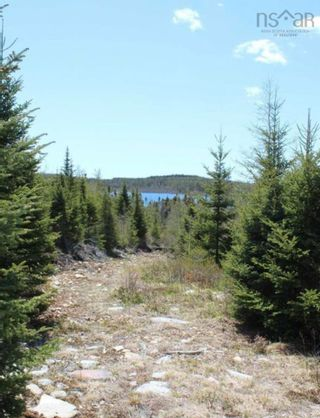 Photo 3: Lot 13B Deerfoot Ridge in West Chezzetcook: 31-Lawrencetown, Lake Echo, Porters Lake Vacant Land for sale (Halifax-Dartmouth)  : MLS®# 202124598