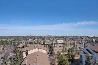 Photo 32: 502 2755 109 Street in Edmonton: Zone 16 Condo for sale : MLS®# E4255140