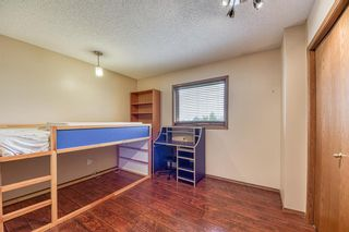 Photo 31: 151 Edgebrook Close NW in Calgary: Edgemont Detached for sale : MLS®# A1131174