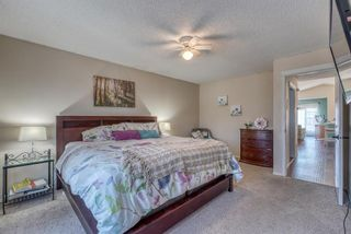 Photo 14: 10 Inverness Place SE in Calgary: McKenzie Towne Detached for sale : MLS®# A1095594