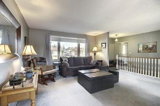 Photo 18: 1711 65 Street NE in Calgary: Pineridge Detached for sale : MLS®# A1038776