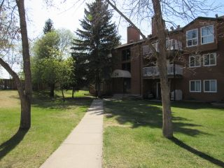 Photo 1: 201, 24 Alpine Place in St. Albert: Condo for rent