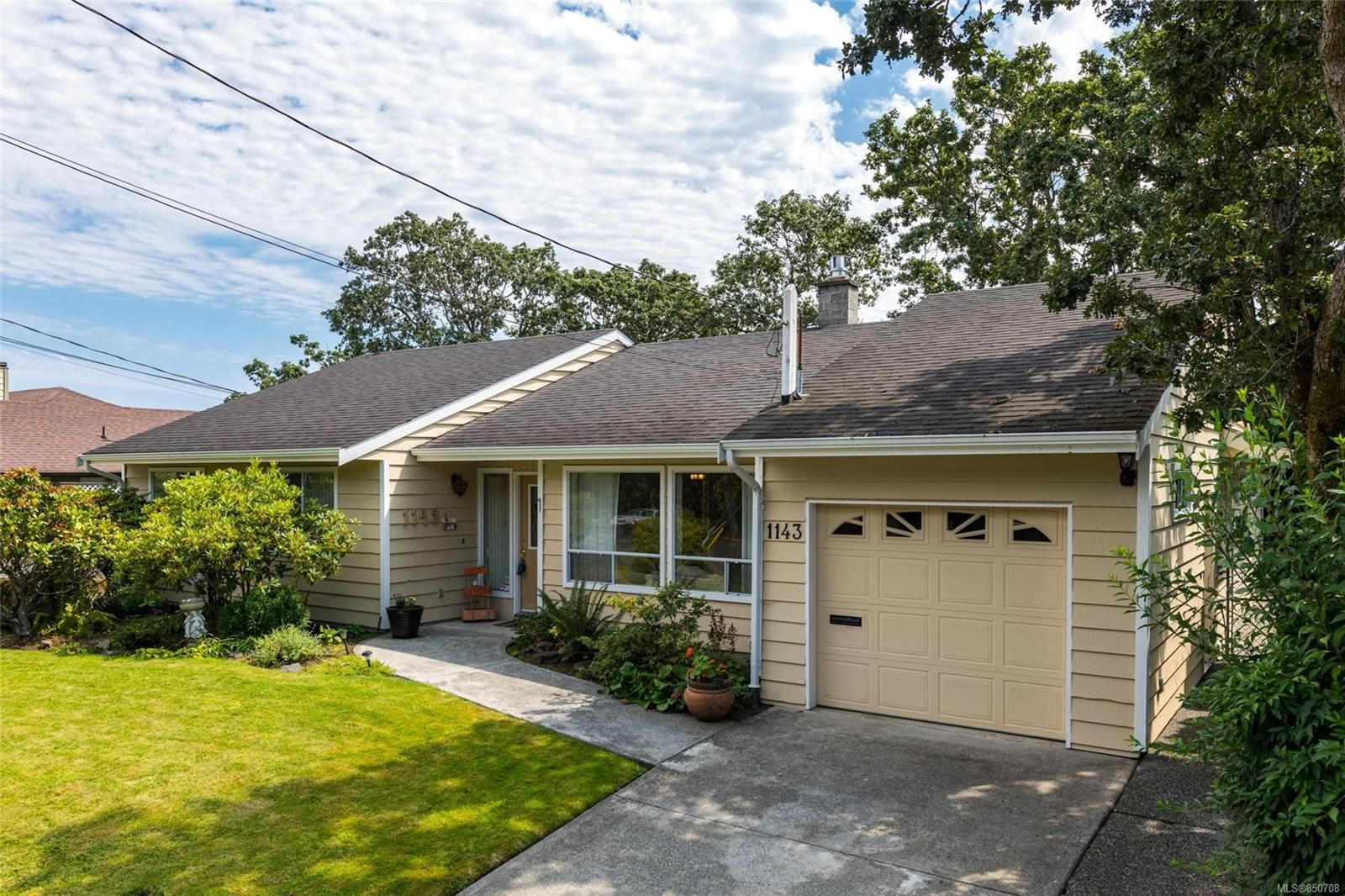 Main Photo: 1143 Nicholson St in : SE Lake Hill House for sale (Saanich East)  : MLS®# 850708