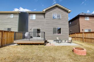 Photo 42: 1733 Baywater Drive SW: Airdrie Detached for sale : MLS®# A1095071