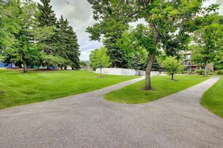 Photo 32: 78D 231 HERITAGE Drive SE in Calgary: Acadia Apartment for sale : MLS®# C4305999