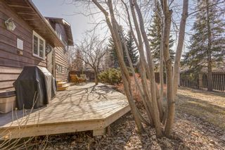 Photo 50: 87 Bermuda Close NW in Calgary: Beddington Heights Detached for sale : MLS®# A1073222