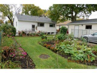 Photo 6: 99 Lennox Avenue in WINNIPEG: St Vital Residential for sale (South East Winnipeg)  : MLS®# 1424381