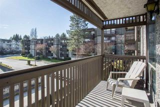Photo 16: 203 13507 96 Avenue in Surrey: Queen Mary Park Surrey Condo for sale : MLS®# R2348774