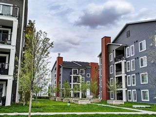 Photo 28: 3212 755 Copperpond Boulevard SE in Calgary: Copperfield Apartment for sale : MLS®# A1128215