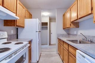 Photo 3: 204 3610 43 Avenue NW in Edmonton: Zone 29 Condo for sale : MLS®# E4258814