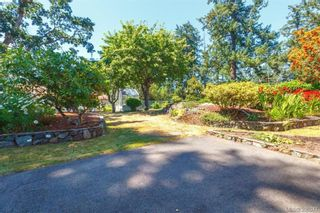 Photo 14: 4188 Bracken Ave in VICTORIA: SE Lake Hill House for sale (Saanich East)  : MLS®# 792670