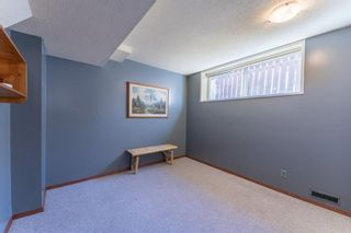 Photo 18: 5219 Whitehorn Drive NE in Calgary: Whitehorn Detached for sale : MLS®# A1149729