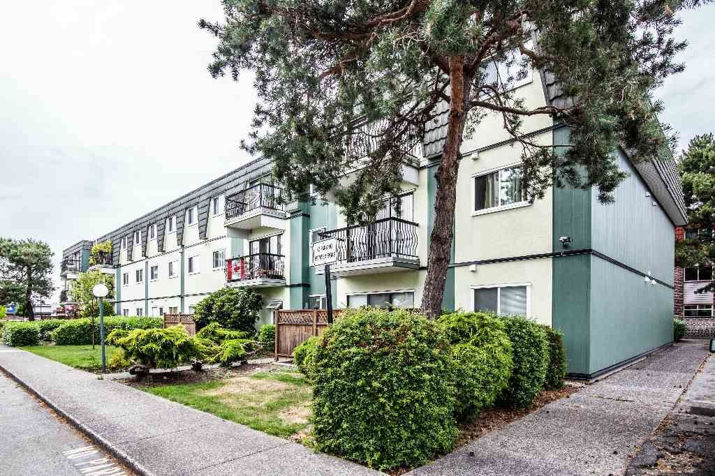 Main Photo: 319 8031 RYAN ROAD in : South Arm Condo for sale : MLS®# R2285888