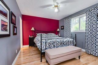 Photo 24: 11208 36 Avenue in Edmonton: Zone 16 House for sale : MLS®# E4249289