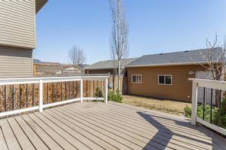 Photo 30: 27 Auburn Bay Manor SE in Calgary: Auburn Bay Detached for sale : MLS®# A1073937