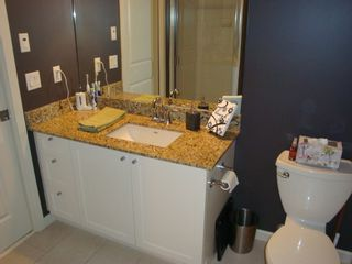 Photo 6: 420 2484 Wilson Avenue in Verde: Central Home for sale ()