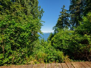 Photo 6: 7484 Lantzville Rd in : Na Lower Lantzville House for sale (Nanaimo)  : MLS®# 878100