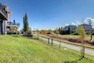 Photo 49: 176 WILLOWMERE Way: Chestermere Detached for sale : MLS®# A1153271