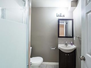 Photo 21: 124 Martinbrook Road NE in Calgary: Martindale Detached for sale : MLS®# A1100901
