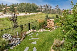 Photo 50: 33 Savanna Grove NE in Calgary: Saddle Ridge Detached for sale : MLS®# A1142384