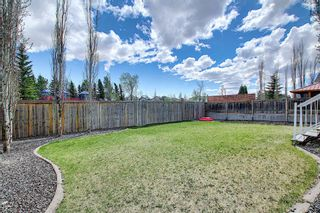 Photo 42: 131 Springmere Drive: Chestermere Detached for sale : MLS®# A1109738