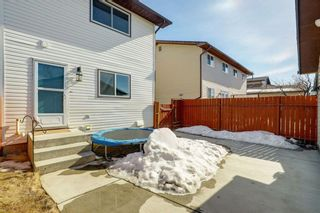 Photo 27: 77 Cedardale Crescent SW in Calgary: Cedarbrae Semi Detached for sale : MLS®# A1076205