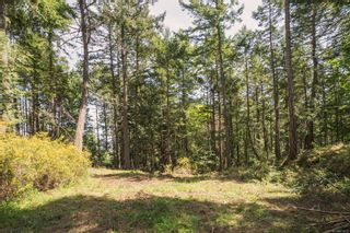 Photo 3: 9904 Castle Rd in Pender Island: GI Pender Island Land for sale (Gulf Islands)  : MLS®# 876033