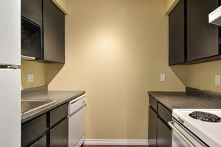 "Photo 6: 311 17661 58A Avenue in Surrey: Cloverdale BC Condo for sale in ""WYNDHAM ESTATES"" (Cloverdale)  : MLS®# R2158983"