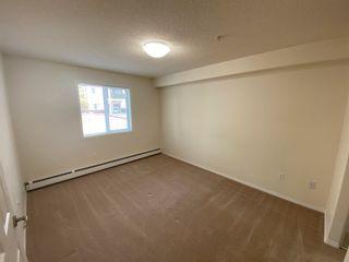 Photo 11: 117 13635 34 Street in Edmonton: Zone 35 Condo for sale : MLS®# E4255095