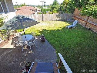 Photo 20: 3929 Braefoot Rd in VICTORIA: SE Cedar Hill House for sale (Saanich East)  : MLS®# 646556