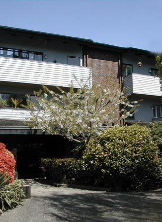 Main Photo: 306 2277 McGill Street in Landmark Terrace: Residential for sale