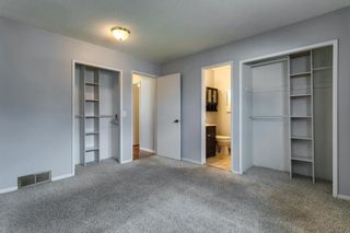 Photo 22: 4763 Rundlewood Drive NE in Calgary: Rundle Detached for sale : MLS®# A1107417