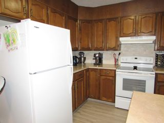 Photo 35: 1433 Idaho Street: Carstairs Detached for sale : MLS®# A1147289