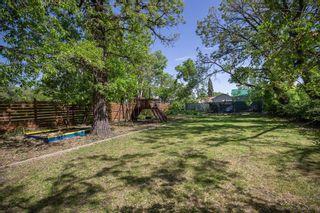 Photo 41: 206 Hindley Avenue in Winnipeg: St Vital Residential for sale (2D)  : MLS®# 202012637