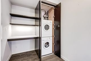 Photo 20: 218 305 18 Avenue SW in Calgary: Mission Apartment for sale : MLS®# A1127877
