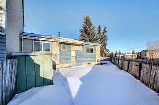 Photo 36: 57 Penworth Close SE in Calgary: Penbrooke Meadows Row/Townhouse for sale : MLS®# A1058735
